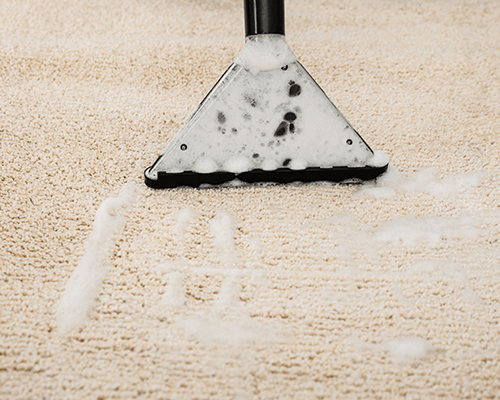 Carpet shampoo cleaning brooklyn