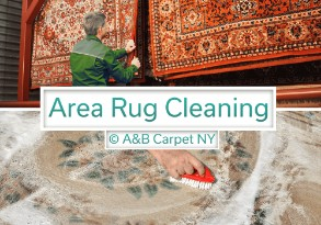Area and Oriental Rug Cleaning - Fulton Ferry 11201